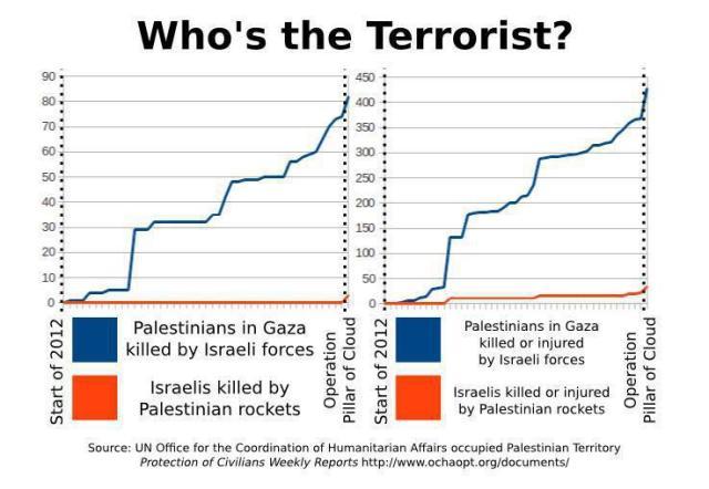 Who's the terrorist ?