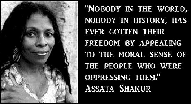 nobody-in-the-world-nobody-in-history-has-ever-gotten-their-freedom-by-appealing-to-the-moral-sense-of-the-people-who-were-oppressing-them-assata-shakur