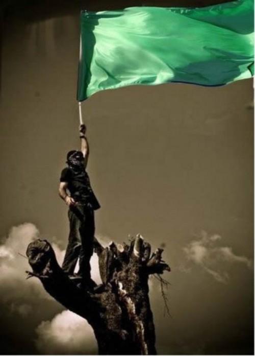 green_resistance-20120113