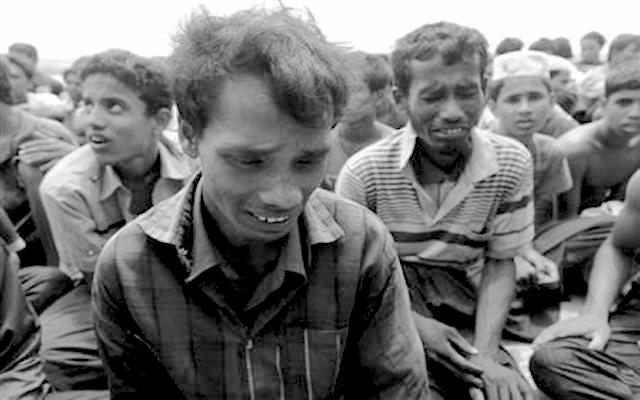 rohingya 67889